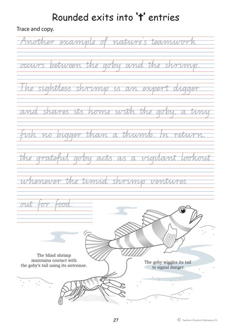 writing worksheets 5 year handwriting exercises for year 5 scripture character