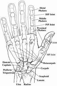 David Nelson Hand Surgery Greenbrae Marin Hand Specialist