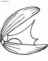 Clam Coloring Drawings Drawing Shell Pearl Pages Giant Clipart Getdrawings Clipartmag Printable Getcolorings sketch template
