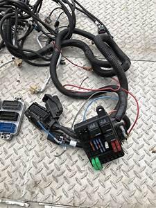 Gmpp Ls3  Hotrod Swap Wiring Harness  U0026 Ecu