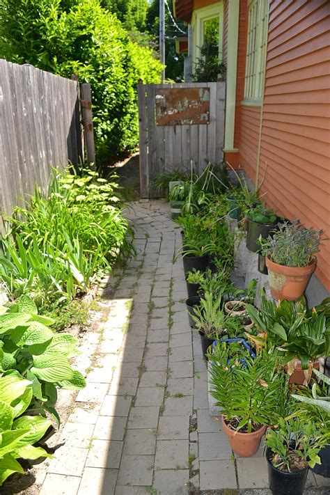 outlaw gardener    part   garden