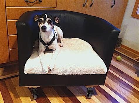 ikea rolling dog bed  ikea hackers ikea hackers