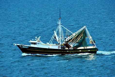 American Shrimp Boats For Sale by Shrimp Boat In The Gulf By Bill Perry