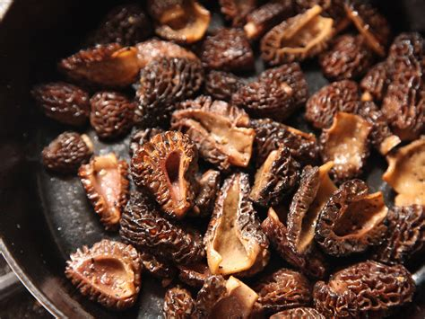 how to cook mushrooms how to clean and cook morel mushrooms serious eats