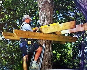 Comment Faire Une Cabane Dans Les Arbres : construire une cabane dans les arbres le guide les m thodes cabane dans l 39 arbre pinterest ~ Melissatoandfro.com Idées de Décoration