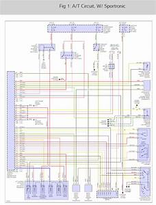 Neutral Safety Switch Plug Diagram  The Wires Got Ripped Out Of