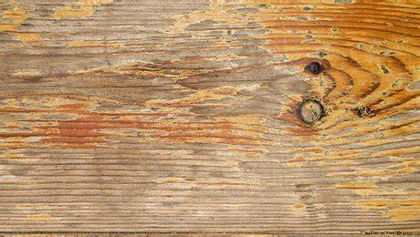 le de wood peinture d 233 caper le bois cir 233 teint 233 ou vernis facilement minutefacile