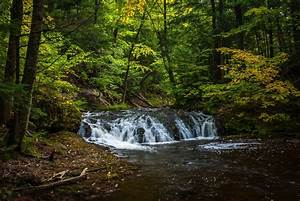 Forest, River, Trees, Waterfall, Nature, Autumn, Wallpapers, Hd, Desktop, And, Mobile, Backgrounds