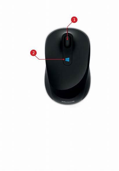 Mouse Sculpt Microsoft Mobile Windows Driver Bought