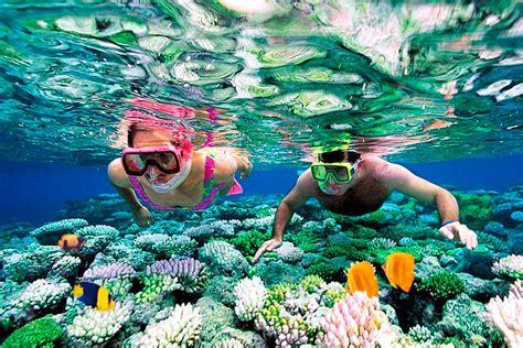 riviera maya snorkeling el tour perfecto de snorkeling