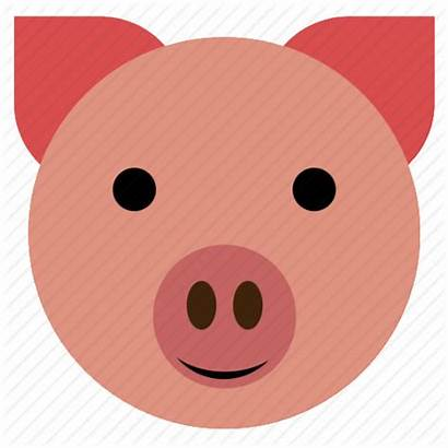 Pig Face Icon Piggy Happy Hog Clipart