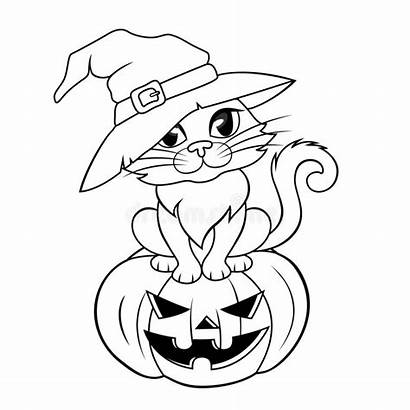 Halloween Cat Coloring Sitting Hat Pumpkin Witch