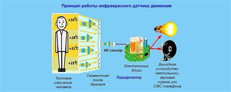 Принцип работы и сфера применения ик датчика движения