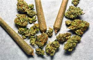Marijuana Retail Sales In Massachusetts Closer Than Ever ...