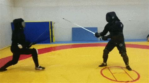 Fencing GIF - Find & Share on GIPHY