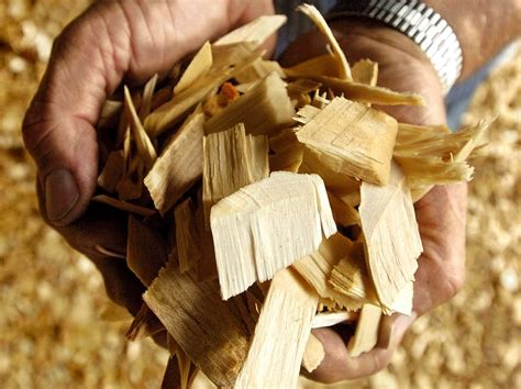 maine ports gearing   export wood chips  europe
