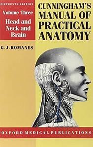 Cunningham U0026 39 S Manual Of Practical Anatomy  Volume Iii 15th