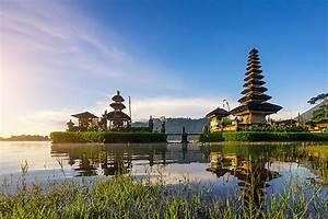 Le Meilleur De Bali   Munduk Et Le Nord Sauvage