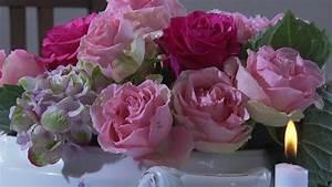 Begleitpflanzen Für Rosen : dokumentation zeit f r rosen unter unserem himmel br fernsehen fernsehen ~ Orissabook.com Haus und Dekorationen