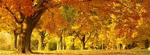 Fall / Autumn Archives | Free Facebook Covers, Facebook ...