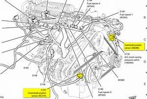 Bmw Crankshaft Position Sensor Location  Bmw  Wiring