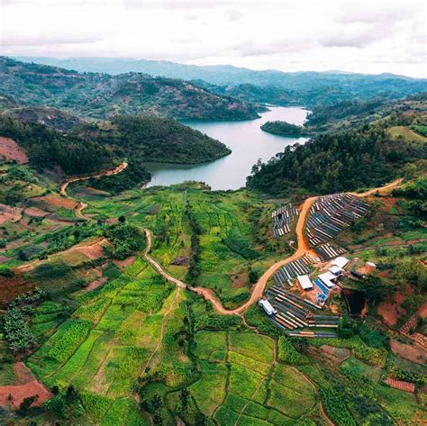 Rwanda's coffee has been grown for a very long time as far back as in the 1930s when rwandan farmers were forced to plant an abundance of coffee trees by the belgian colonial empire. Rwanda Coffee Beans - Espresso & Coffee Guide