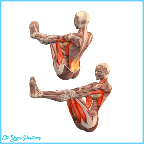 Boat Pose For Psoas by Navasana Pose All Allyogapositions
