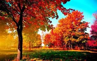 autumn wallpaper exles for your desktop background