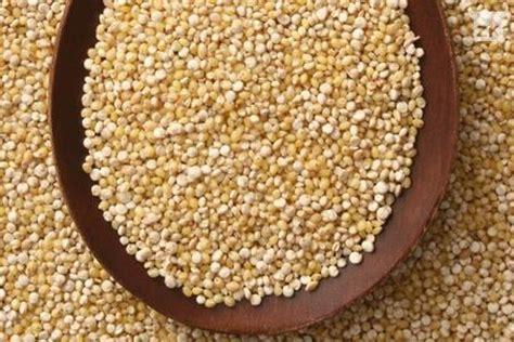 Kvinoja idealna za alergičare - Zdrava Krava