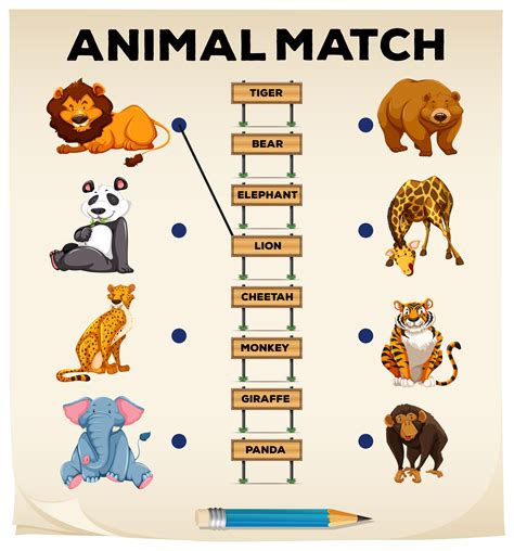 animal matching  pictures  words