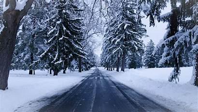 Snow Winter Road Trees 4k Landscape Wallpapers