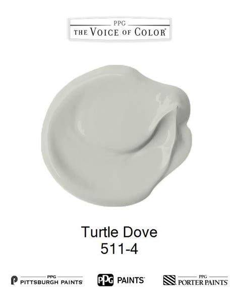 turtle dove 511 4 voice of color ppg pittsburgh paints