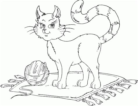 Coloring Kucing by Kucing Betina Gambar Mewarna Colouring Picture