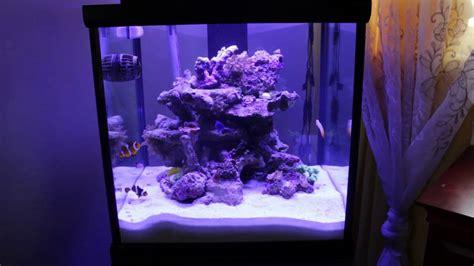 65 gallon rimless aquarium