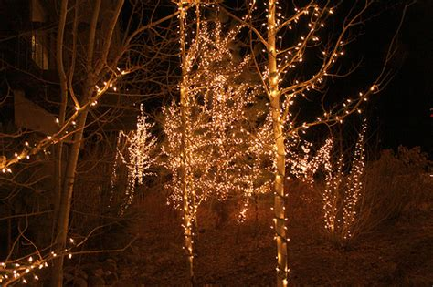 christmas christmas lights city lights forest house