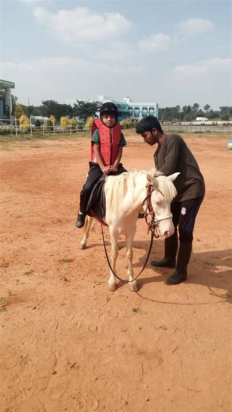 boarding riding schools horse india horses couple residential emerald lessons international ride