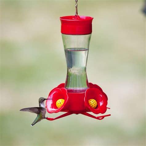 walmart hummingbird feeders pet pinch waist glass hummingbird feeder with free
