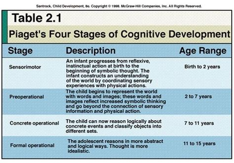 stages  child development  piaget child