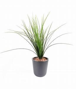 Plantes D Extérieur Pour Terrasse : plante artificielle herbe onion grass plastique en piquet ~ Dailycaller-alerts.com Idées de Décoration