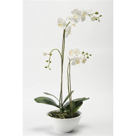 blanc en pot composition phalaenopsis orchidee artificielle en pot 90 cm blanc orchid 233 es en pot ou en motte