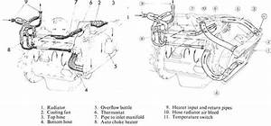 Engine Block Coolant Passage Diagram   Spitfire  U0026 Gt6 Forum   Triumph Experience Car Forums