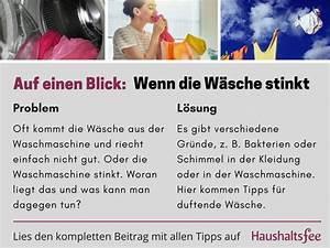 Was Kann Man Tun Wenn Die Waschmaschine Stinkt : 261 best toilette wc reinigen images on pinterest ~ Markanthonyermac.com Haus und Dekorationen