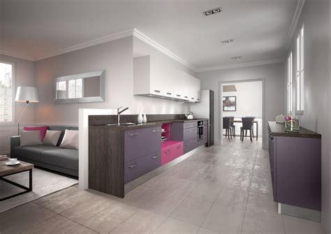 cuisines bonnet cuisine équipée moderne violette modèle harmonie mélaminé