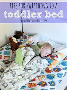 1000+ ideas about Toddler Bed Transition on Pinterest ...