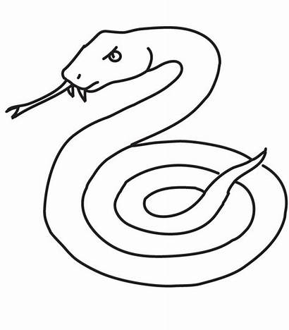 Snake Coloring Pages Printable Copperhead Sea Snakes