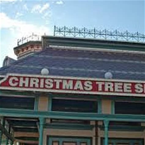 christmas tree shops christmas trees 295 old oak st pembroke ma united states reviews