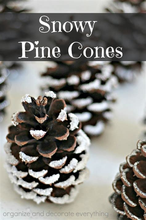 snowy pine cones 4 ways organize and decorate everything
