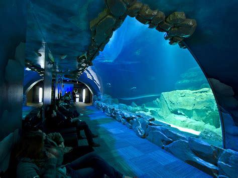 voir des animaux 224 et autour de fermes zoos aquariums