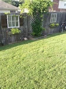 Pin, On, Farm, U0026, Garden