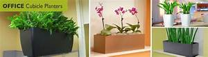 Office Cubicle Planters, Window Boxes Wholesale